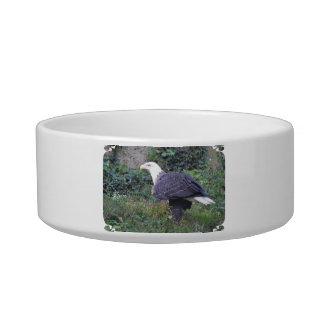 Standing American Bald Eagle Bowl