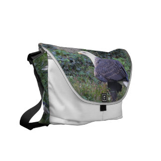 Standing American Bald Eagle Courier Bag