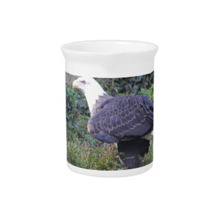 Standing American Bald Eagle Drink Pitcher