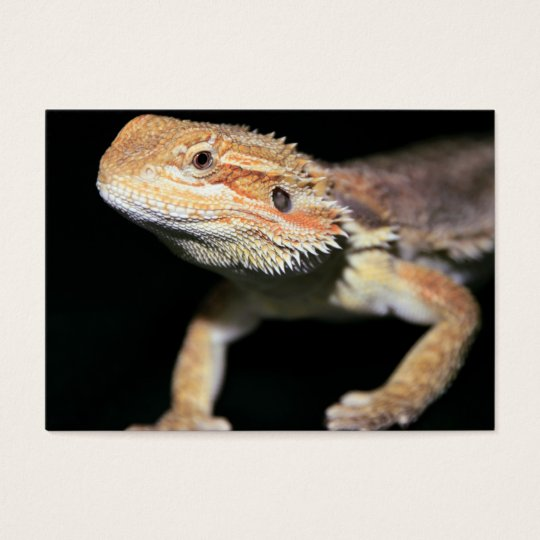 Standing Bearded Dragon Business Card