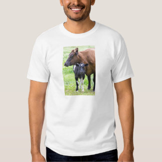 Standing brown mother cow with black white calf shirt