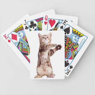 Standing cat - kitty - pet - feline - pet cat bicycle playing cards