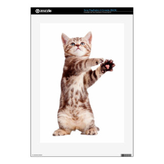 Standing cat - kitty - pet - feline - pet cat skin for the PS3