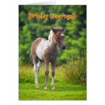 Standing Dartmoor Pony Foal birthday card