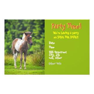Standing Dartmoor Pony Foal flyer invites