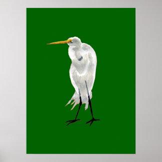 Standing Egret Poster