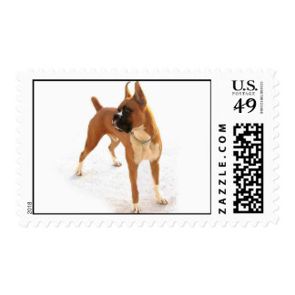 Standing fawn boxer stamp