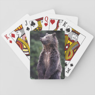 Standing Grizzly Bear Playing Cards