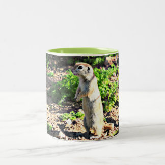 Standing Ground Squirrel Two Tone Coffee Mug