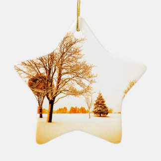 standing in the snow 8.jpg christmas tree ornament