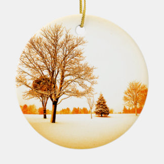 standing in the snow 8.jpg christmas tree ornaments