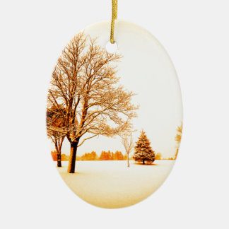 standing in the snow 8.jpg christmas ornament