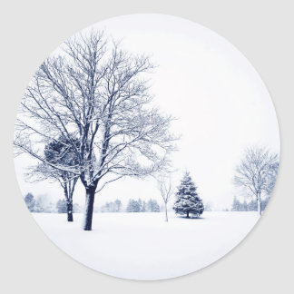 Standing In The Snow Classic Round Sticker