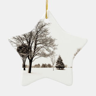 Standing In The Snow Christmas Tree Ornaments