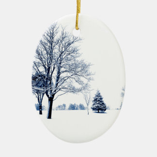 Standing In The Snow Christmas Ornaments