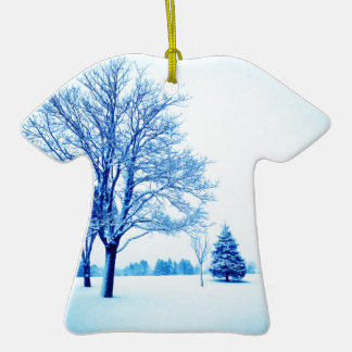 Standing In The Snow Ornaments
