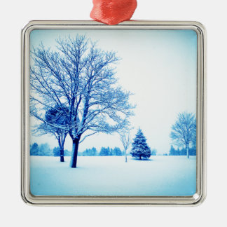 Standing In The Snow Ornament