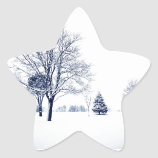 Standing In The Snow Star Sticker