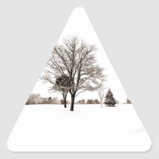 Standing In The Snow Triangle Sticker