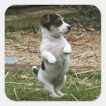 Standing Jack Russell Terrier Puppy Sticker Sheet