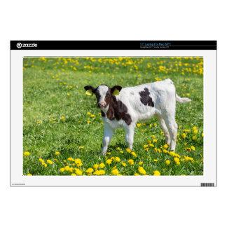 "Standing newborn calf in meadow with yellow dandel 17"" laptop decal"