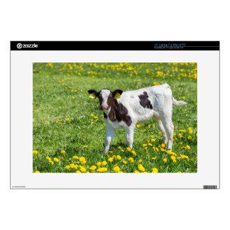 Standing newborn calf in meadow with yellow dandel laptop skin