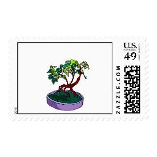Standing On Root Elm Like Bonsai Tree Stamp