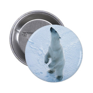 Standing Polar Bear 2 Inch Round Button