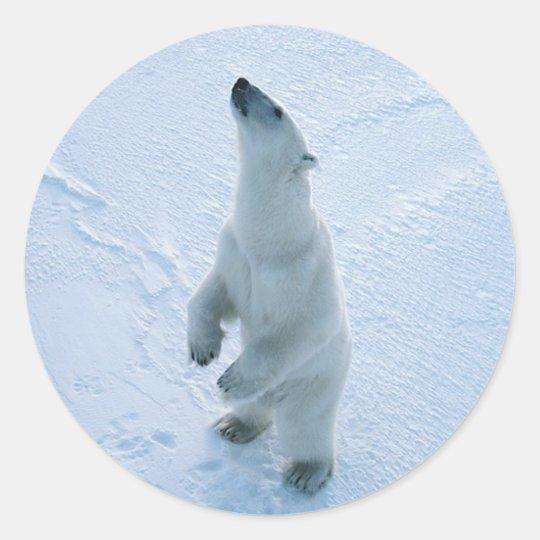 Standing Polar Bear Classic Round Sticker