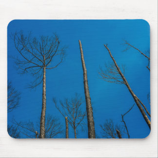 Standing Still Mouse Pad