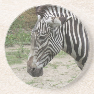 Standing Still Zebra Coaster