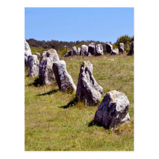 Standing stones at Carnac in France Postcard