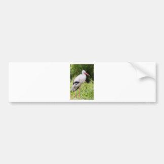 Standing stork bumper sticker