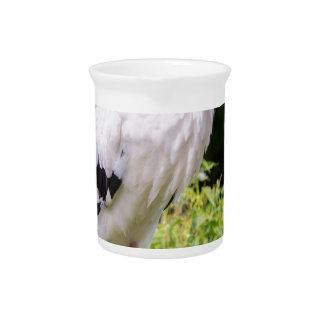 Standing stork drink pitcher