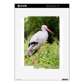 Standing stork iPad 2 decal
