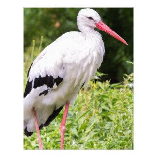 Standing stork letterhead