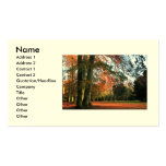 Standing Tall Business/Profile Cards Business Card Templates