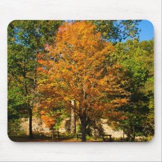 Standout Autumn Tree mousepad