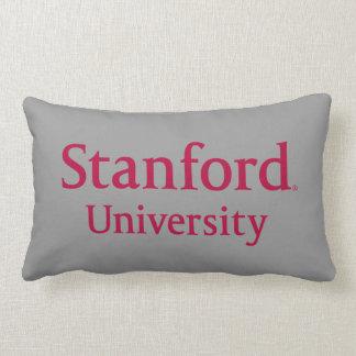 stanforduniversity_stacked.ai almohada