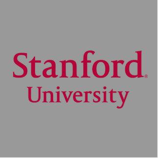 stanforduniversity_stacked.ai escultura fotografica