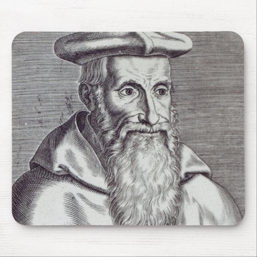 Stanislaus Hosius Tapete De Ratones