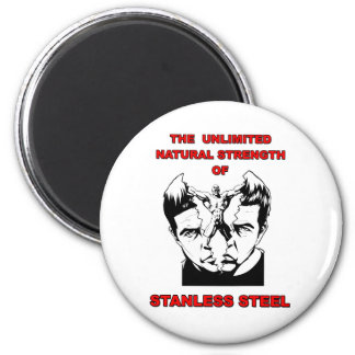Stanless Steel 2 Inch Round Magnet