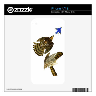 Stanley Hawk John James Audubon Birds of America Skin For The iPhone 4