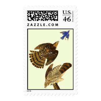 Stanley Hawk Postage Stamps