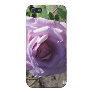 stanley park rose case for iPhone 5