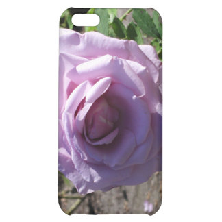 stanley park rose iPhone 5C covers