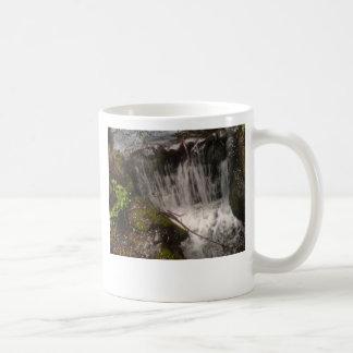 Stanley Park Waterfall Coffee Mug
