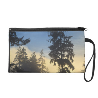 Stanley Park, woods, marine layer fog rolling in Wristlet Clutches