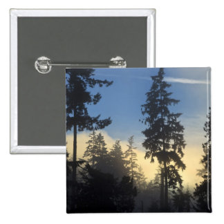 Stanley Park, woods, marine layer fog rolling in 2 Inch Square Button