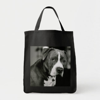 Stanley the Pitbull Bags